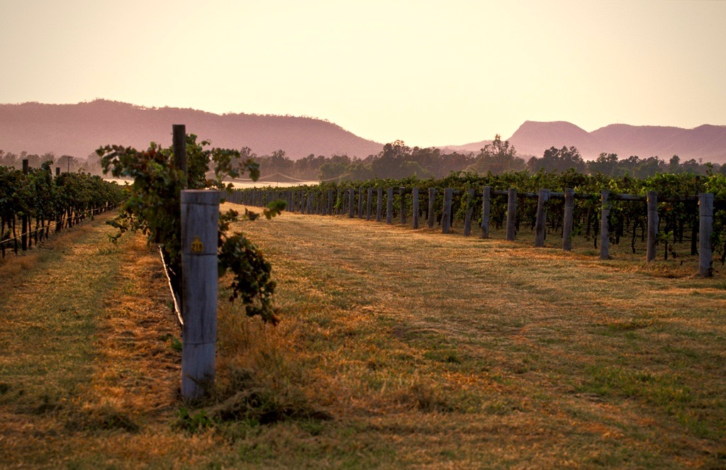 Winesellers, Ltd. Presents Beverage Dynamics Magazine features Hope Estate Australian Wines
